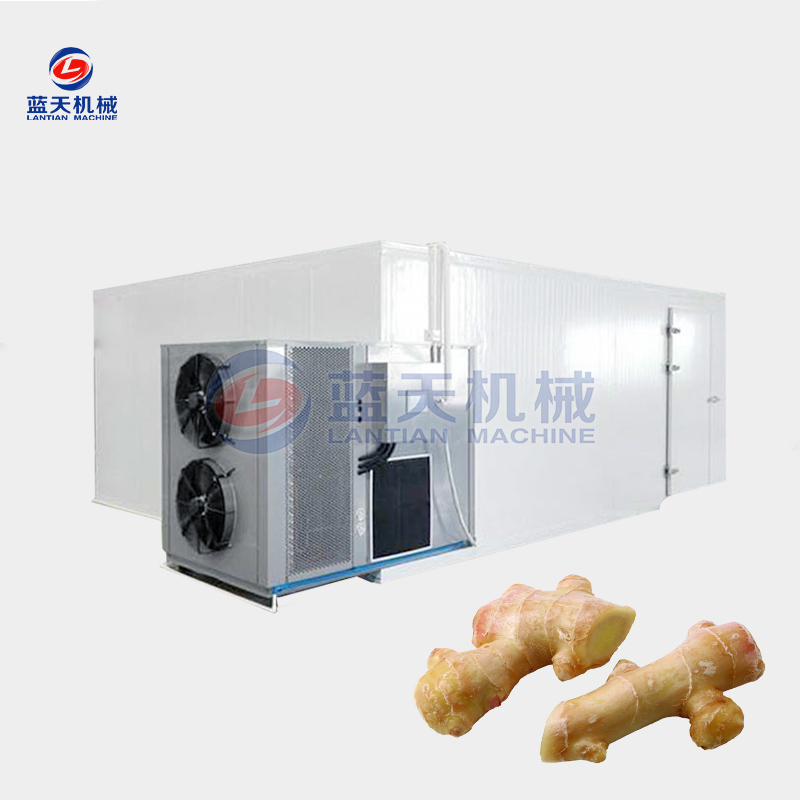 ginger chips dryer equipment