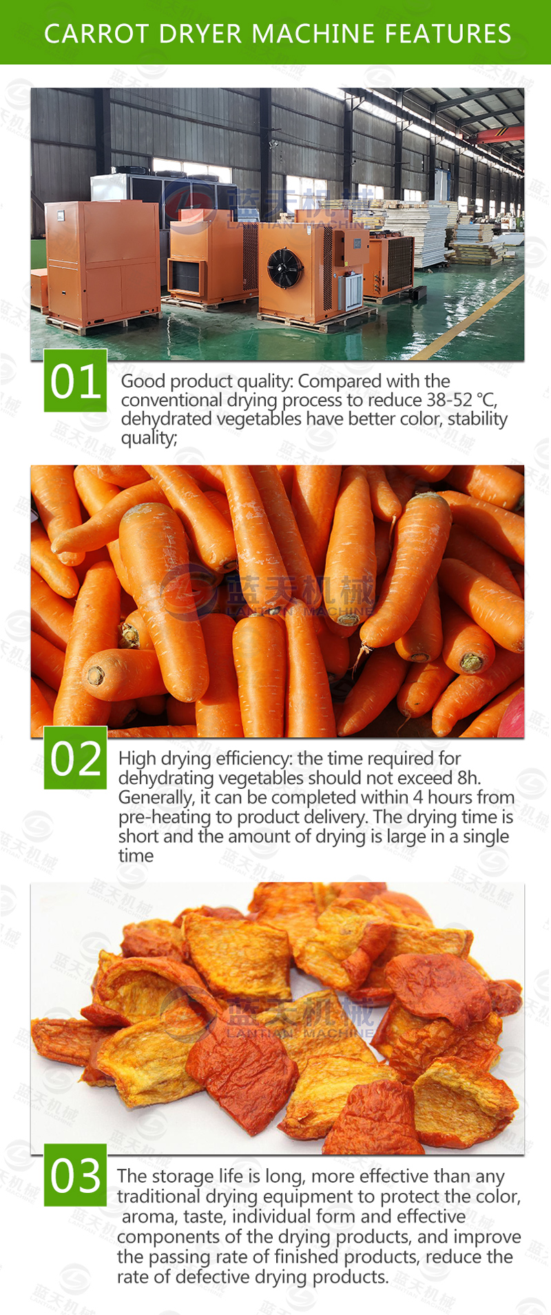 carrot chips dryer machine