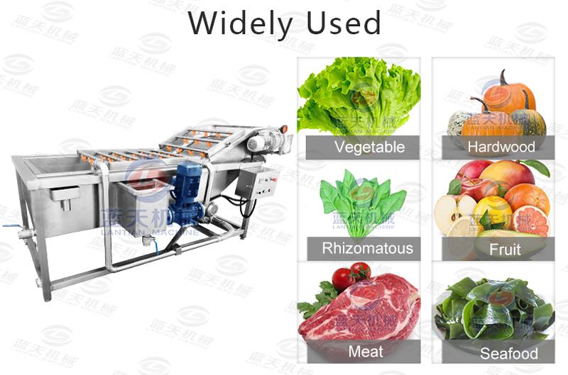 Widely used of lettuce washer