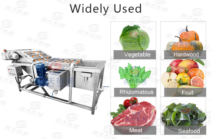 Widely used of cabbage washer