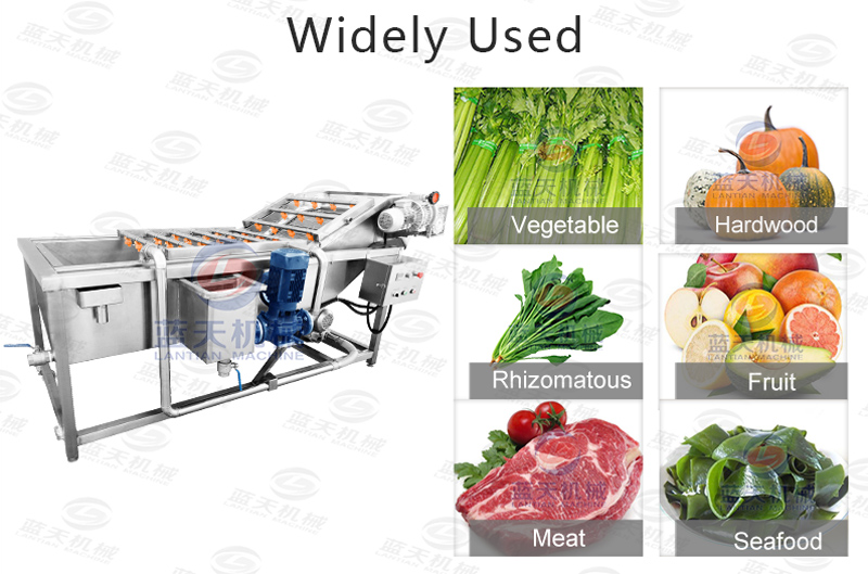 Widely used of spinach washing machine