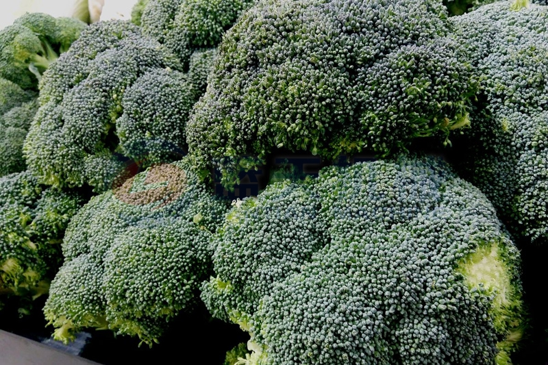 Our broccoli dryer machine can keep edible value well
