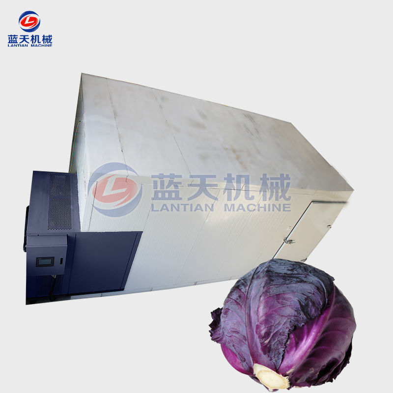 Purple Cabbages Dryer