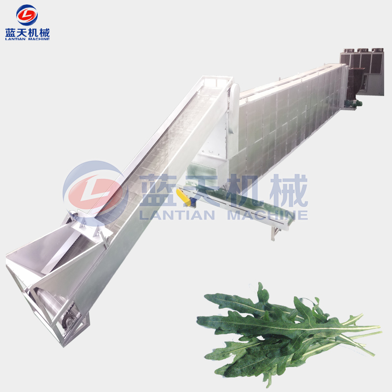 Arugula Drying Machine